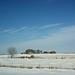 Texas Road Trip Jan 2014 2