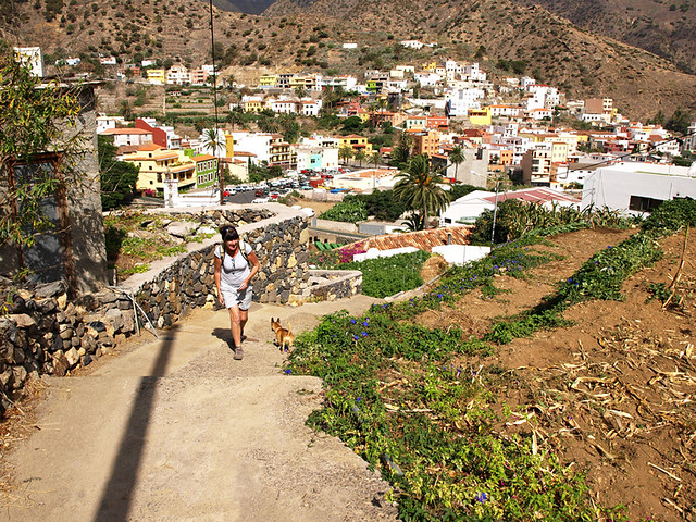 Climbing out of Vallehermoso, La Gomera