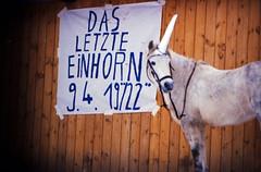 """Filmwerbe-Dia """"Das letzte Einhorn"""" (07b)"""