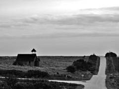 crossroads....
