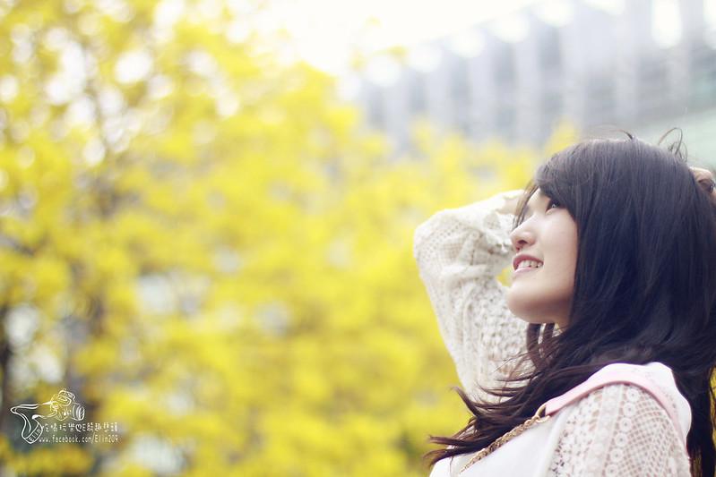 花 (27)