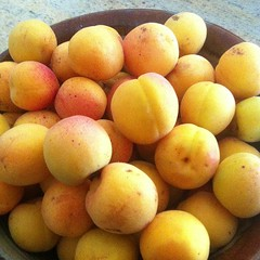 apricot, produce, fruit, food, loquat,