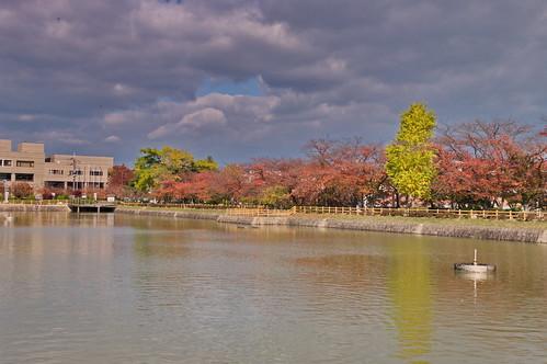 【写真】2012 紅葉 : 長岡天満宮/2020-10-09/IMGP6566