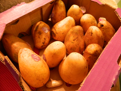 Ugly Mangoes