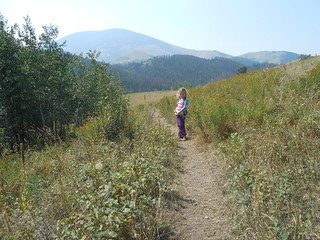 Highwood Mountains (24)