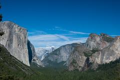 Yosemite National Park-August 2013