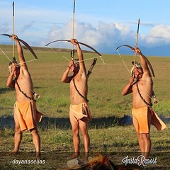 sports, bow and arrow,