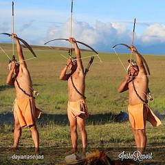 archery(0.0), wind(0.0), target archery(0.0), sports(1.0), bow and arrow(1.0),