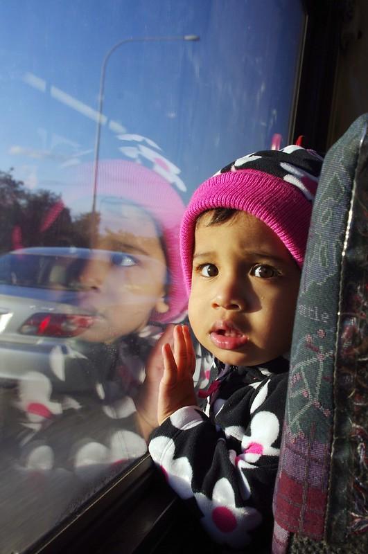 西雅圖巴士上的孩子(一張流)