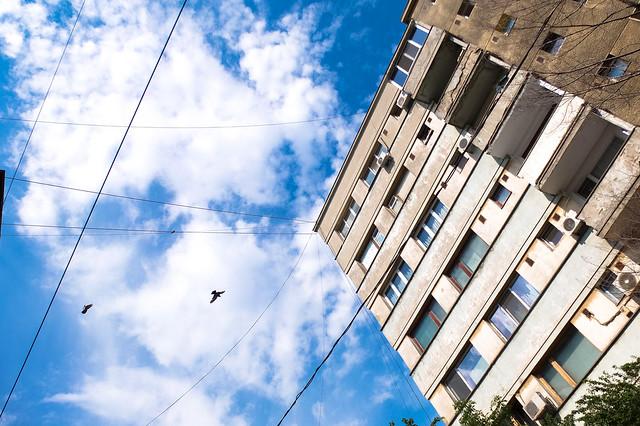 Albastru de București