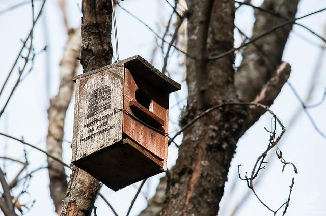 Senderos por los bosques del Valle de Ambroz: El Castañar de Hervás