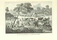 Image taken from page 61 of 'Von der Capstadt ins Land der Maschukulumbe. Reisen im südlichen Afrika in den Jahren 1883-1887 ... Mit 205 Original-Holzschnitten, etc'