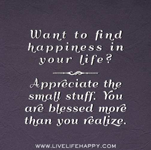 Want to find happiness in your life? Appreciate the small stuff. You are blessed more than you realize.
