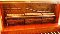 computer component(0.0), string instrument(0.0), electronic device(0.0), harpsichord(0.0), fortepiano(0.0), input device(0.0), harmonium(0.0), spinet(0.0), string instrument(0.0), celesta(1.0), piano(1.0), keyboard(1.0), player piano(1.0),