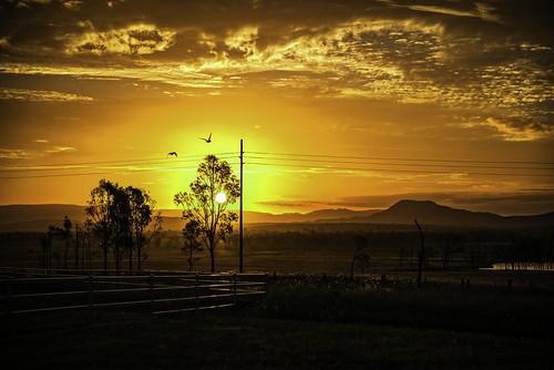 sunset sky sun night clouds landscape farm australia queensland farmscape pwpartlycloudy peakcrossingcountry