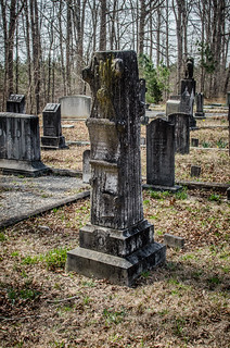 Liberty Springs Presbyterian Church and Cemetery-038