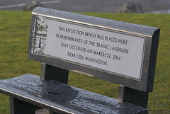 Oso landslide Memorial Bench