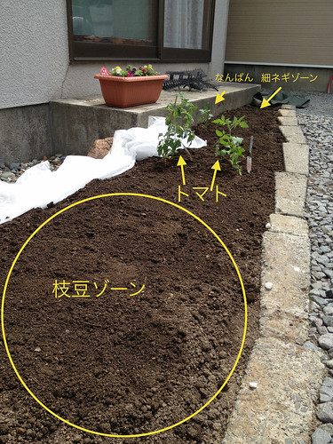 2013年度_家庭菜園
