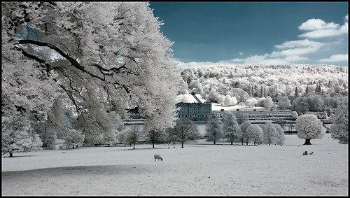 Chatsworth House and Trees - colour infra Red Khromagery action by geospace