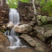Cheaha Loop Falls by Longleaf.Photography