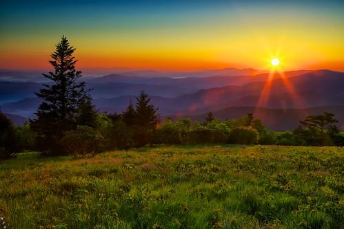 Roan Mountain Sunrise 6-15-2013 115