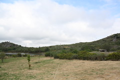 Anta da Merugem em Carvalhal de Vermilhas, Vouzela