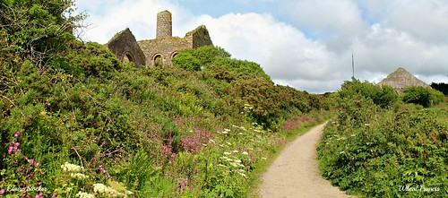 Wheal Francis by Stocker Images