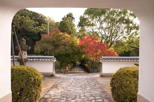【写真】紅葉 : 興聖寺