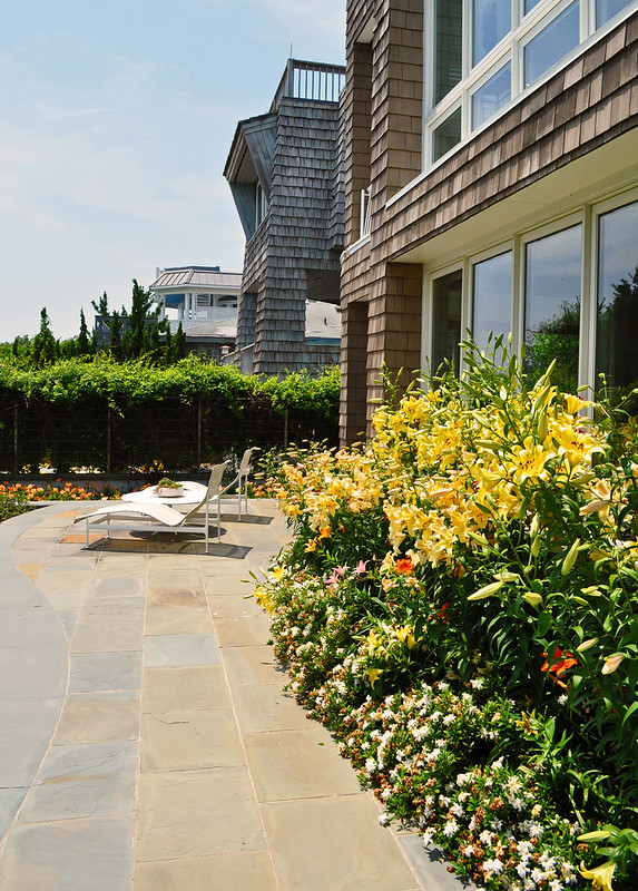 Goodman Garden (20)