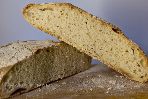 Pane con liquido di governo della mozzarella di bufala
