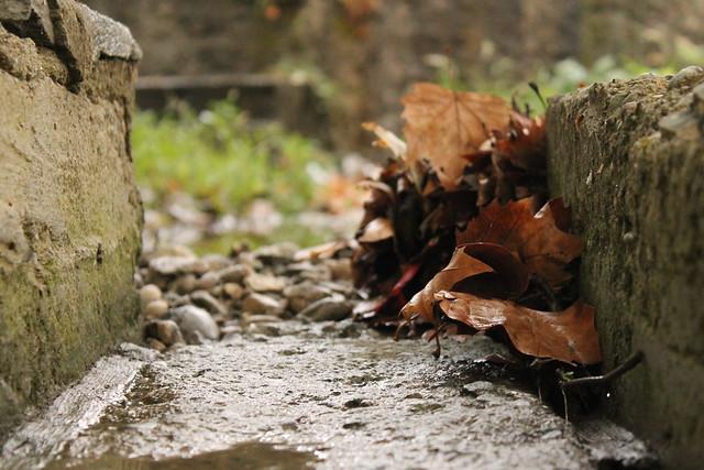 Πρώτη βροχή 2013 by Psinthos.Net, on Flickr