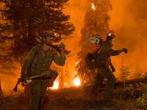 Forest Service firefighters work to contain a wildland fire. (U.S. Forest Service)