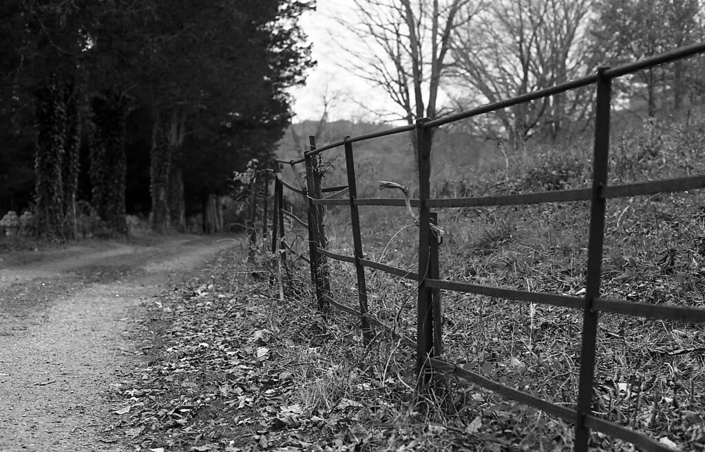 400TX:365 - Week 43 - Ringwood Manor