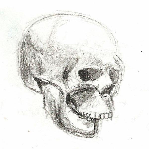 Skull_Sketch_01
