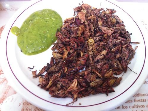 México DF | Restaurante Don Chon | Chapulines