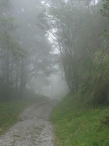 20130908-太平山-翠峰湖 (26)-H4118