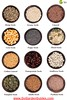 Infographic Seed Garden Variety of Seeds in Bowls Assortment by Go Garden Guides