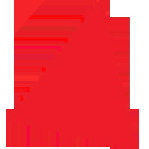 Logo_Bain-&-Co_www.bain.com_dian-hasan-branding_US-1