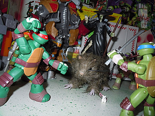 Nickelodeon TEENAGE MUTANT NINJA TURTLES :: THE RAT KING { tOkKustom vermin wash } xvii / RAT ATTACKS!! (( 2013 ))