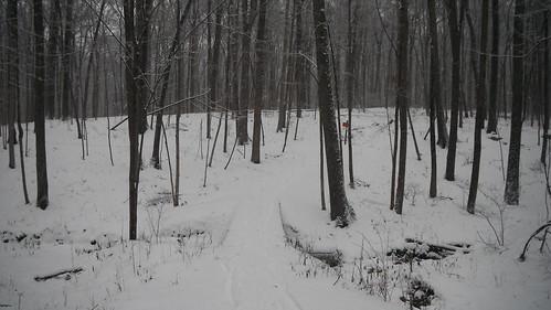 Fort Harrison State Park Snowpocalypse 2014 MTB Ride