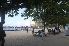 Tartle Beach