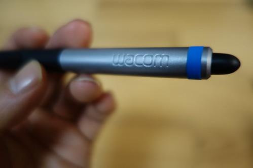 DSC07787.JPG