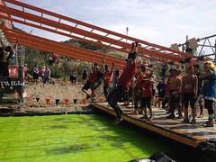 Tough Mudder - Funky Monkey 2