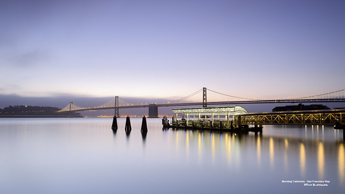 Morning Calmness - San Francisco Bay