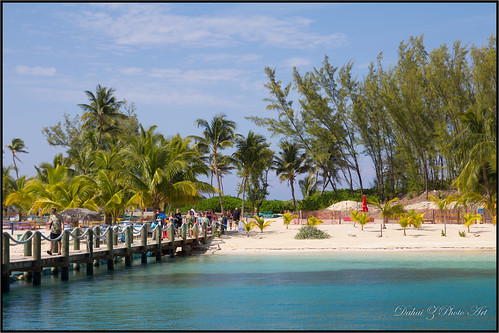 beach paradise royalcaribbean nassaubahamas bluelagoonisland dolphinencounters springbreak2014 cruise2014