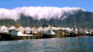 Trawlers in Cape Town harbour.