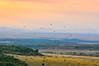 Velvet Morning, Masai Mara by Poulomee Basu