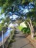 Sandy Bay Rivulet, Sandy Bay