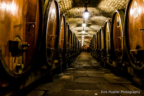 Wine cellar of Strasbourg by Dirk Mueller Photography