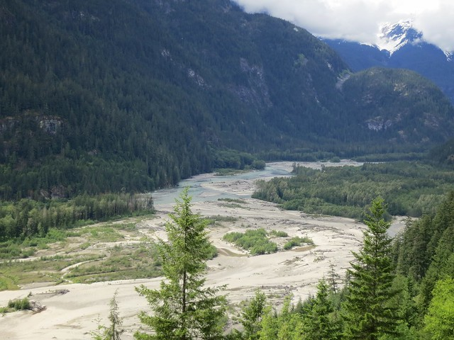Squamish River meanders